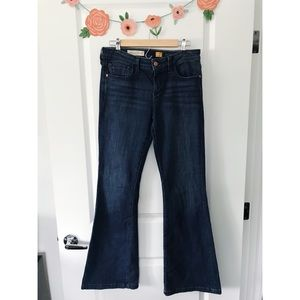Pilcro & Letterpress High Rise Stet Flare Jeans 29